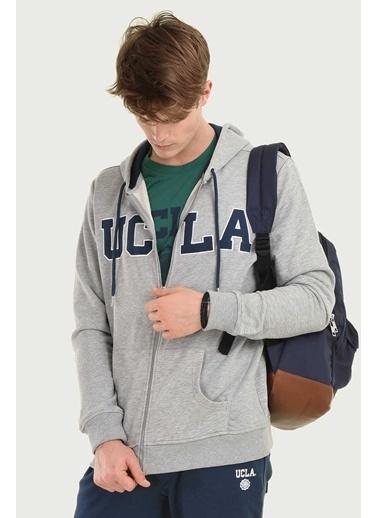 UCLA Sweatshirt Gri